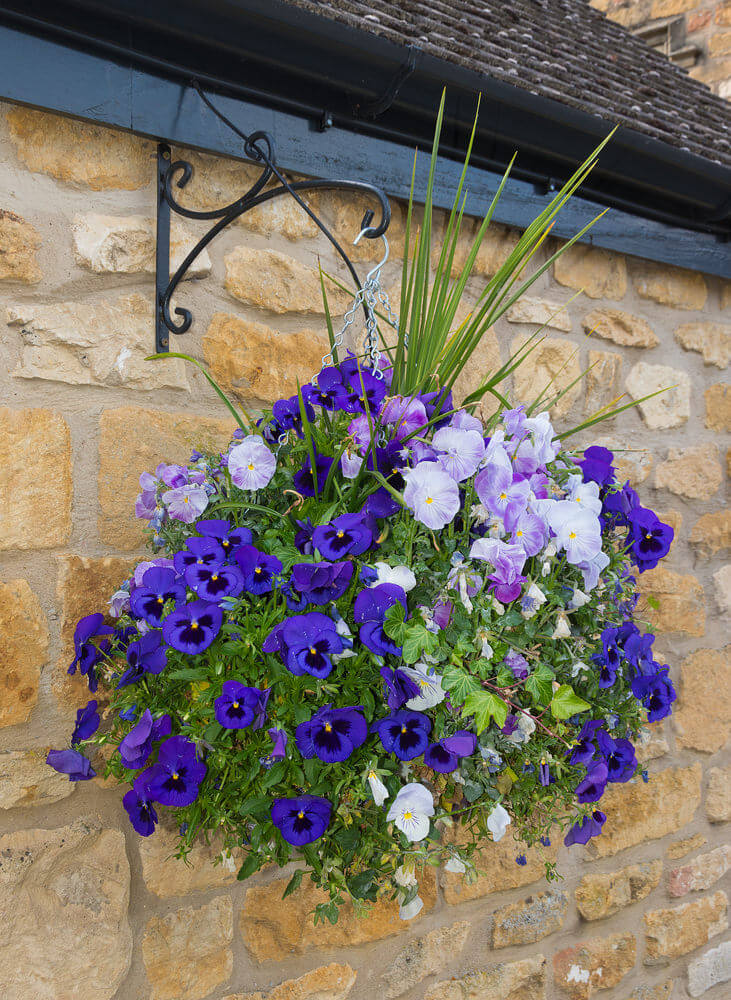 Flowers For Hanging Baskets In Winter : Hanging flower planter ideas photos and top