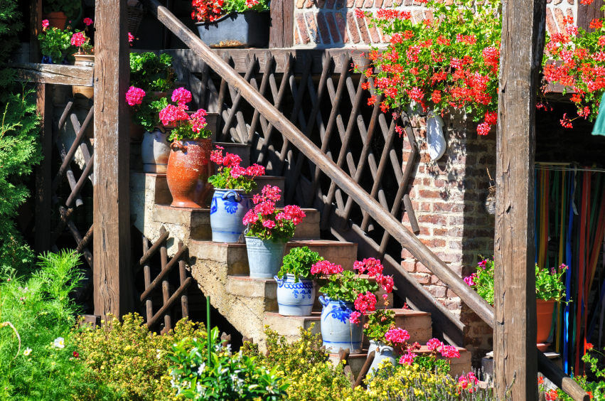 The ceramic pots planted with flowers serve as decorative staircase guards. It gives elegance to simple and old outdoor steps.
