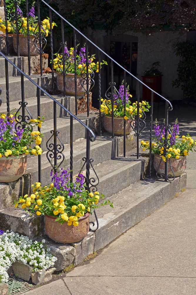 47flower-pots-on-stairs