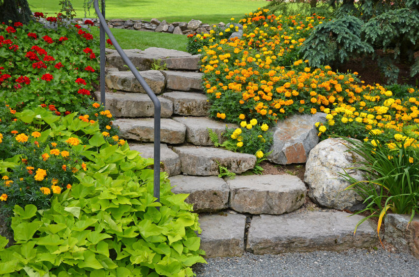 These colorful spring flowers that are in full blossom bring gaiety and anticipation as you pass through the stairway of boulders.