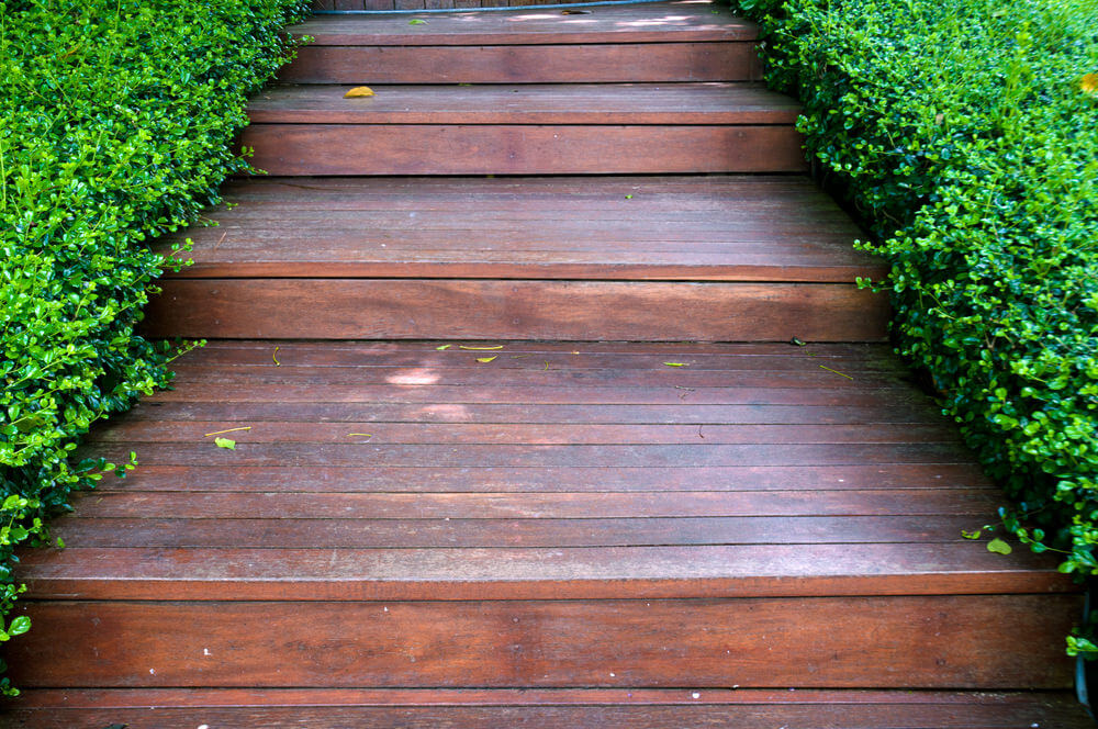 Well-trimmed hedges makes a neat presentation of thess broad wooden garden steps.