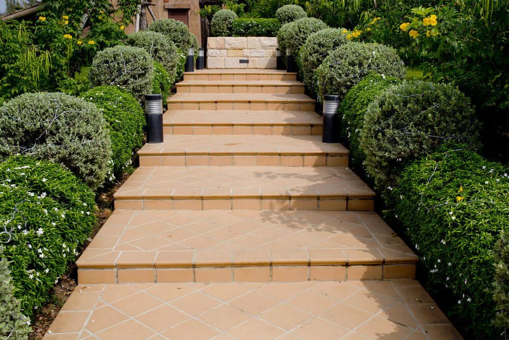 Evergreen shrubs lining up the concrete garden steps make a good ornamental boundary.