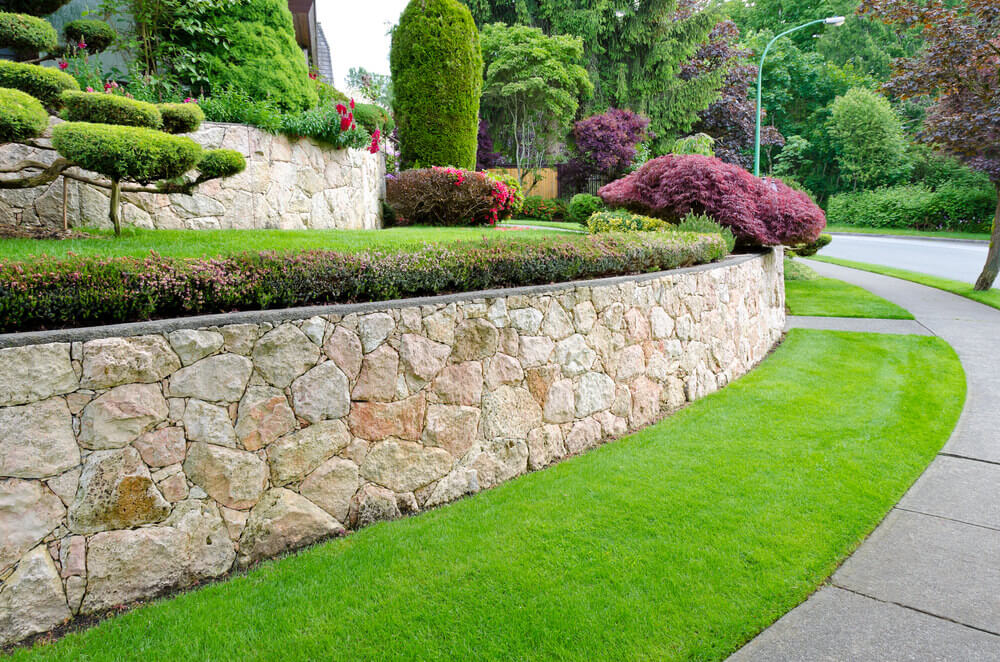 The rubble stone wall of this design is as tidy as the well-groomed grasses and well-trimmed plants growing along it.