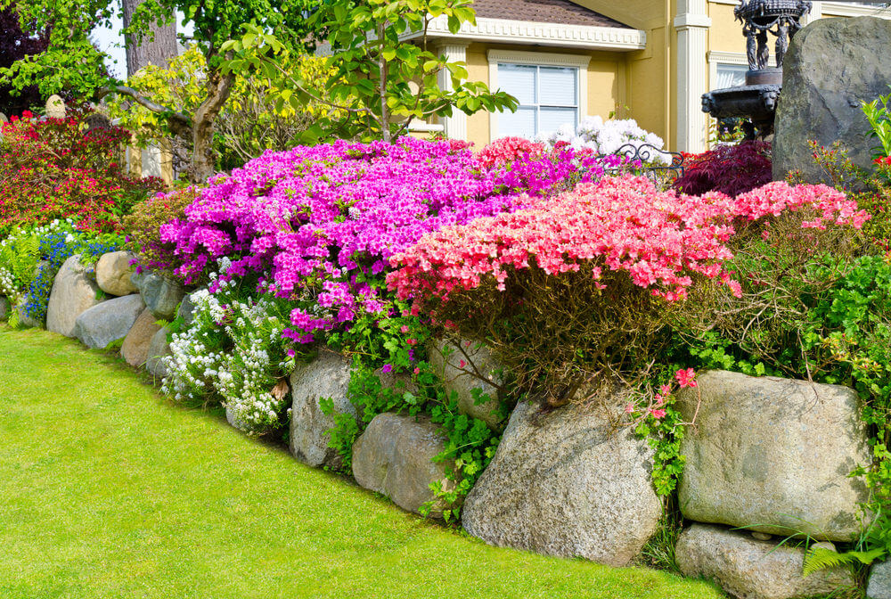 Purple, pink and white petunias embrace the rock formations that are stacked into an elevation.