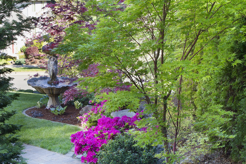 Along with the young maple trees lie petunia shrubs, while a Venus inspired water fountain peeks out from the distance.