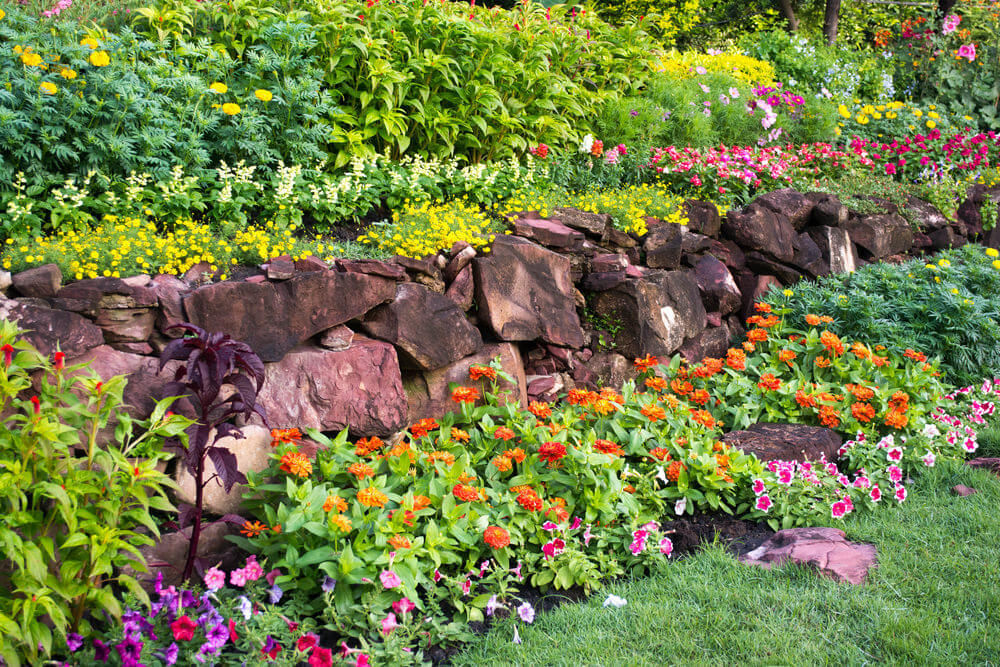 Daisies, marigolds and petunias are among the blossoms that give life to these rubble stones.