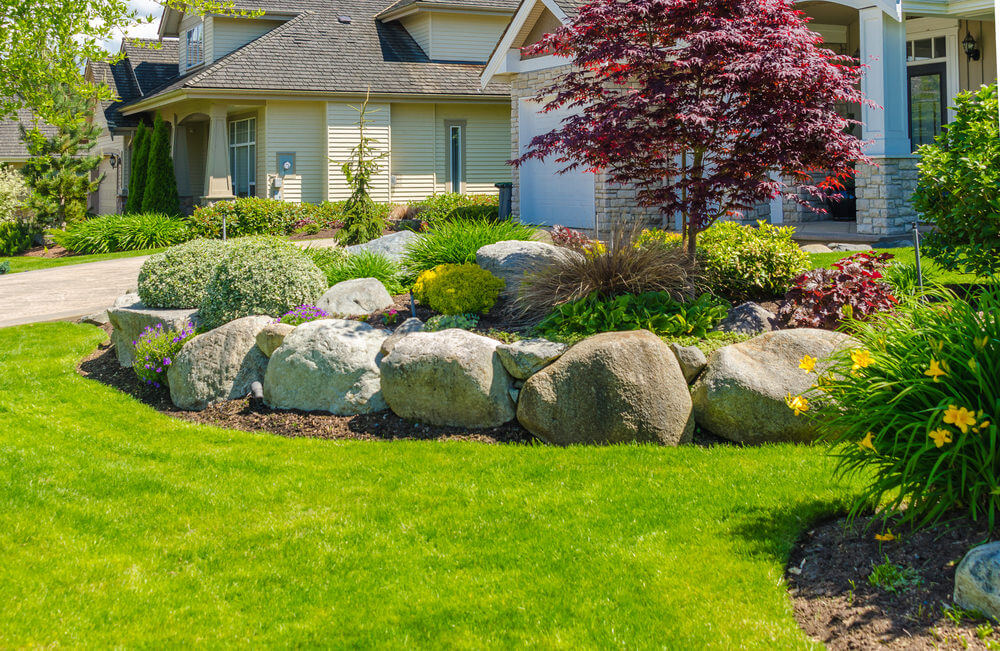 This fascinating front yard is furnished with up-sized rocks and green  grass landscape.