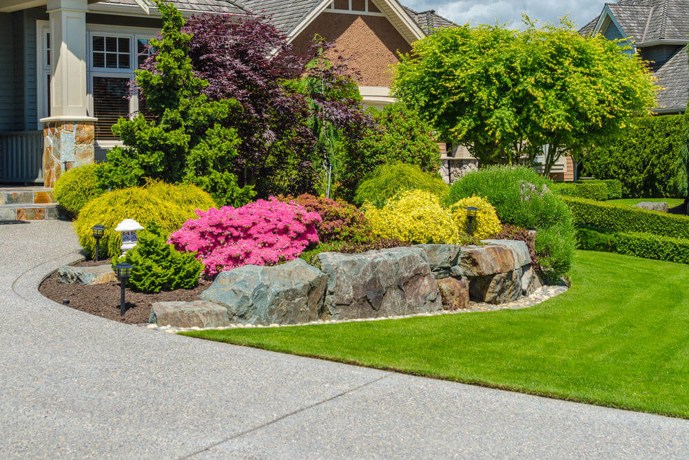 The neat and well-groomed grass is furnished with large rocks, trimmed shrubs and colorful flowering bushes.