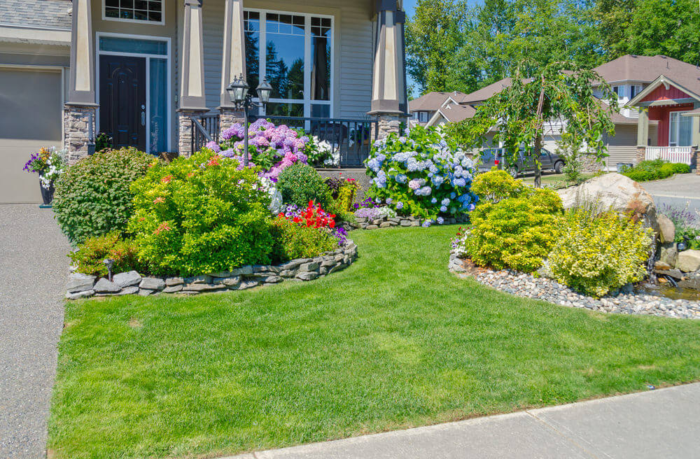 ... Front Yard Gardens. Featuring The Vast Greenery And Colorful Blooms Of  Geraniums, Decorated With Rocks Around Them,