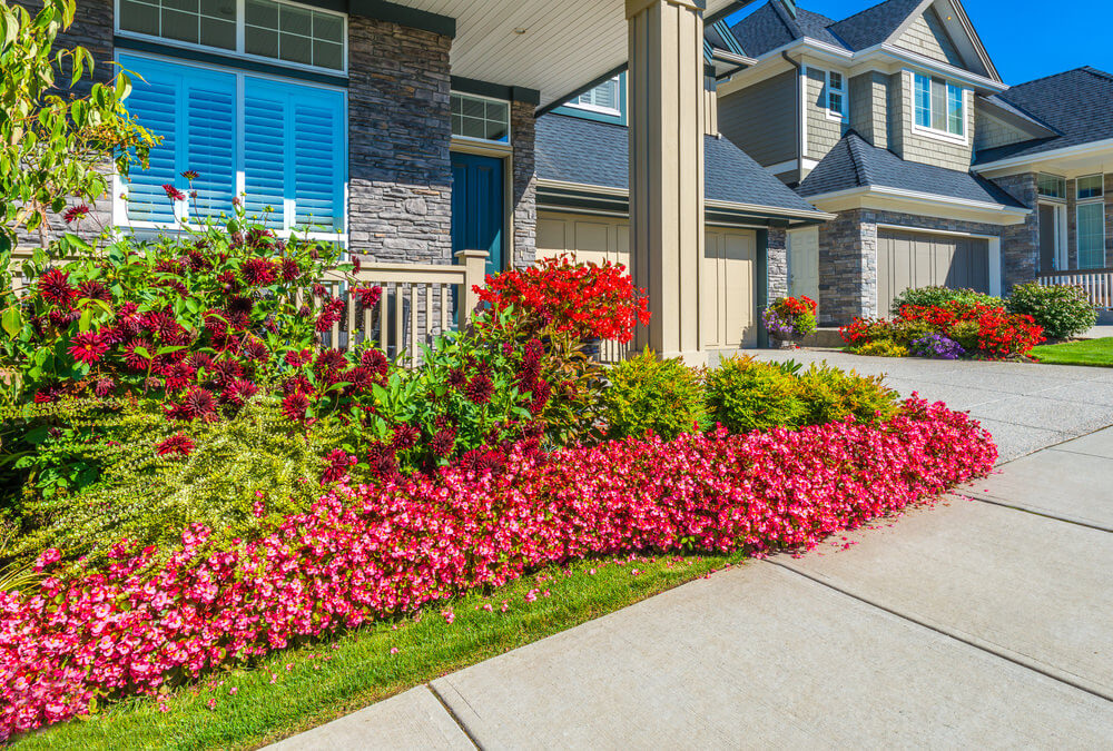 Red petunias and maroon gerbera daisies highlights the view of the bluish brick stone house.