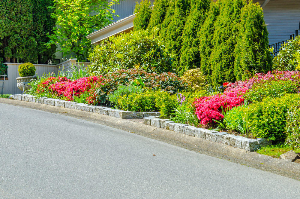 Potted shrubs. brick stones, petunias, pine trees and other green shrubs beautifully cover the view of the house.