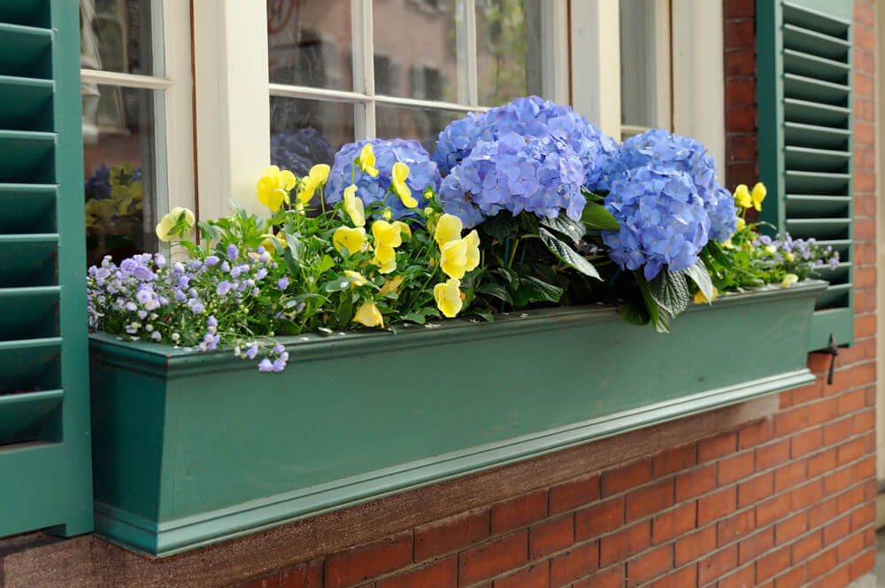 Use different sizes of flowers with the hydrangeas in the middle and arrange them like a pyramid. One side goes upward while the other side goes downward.