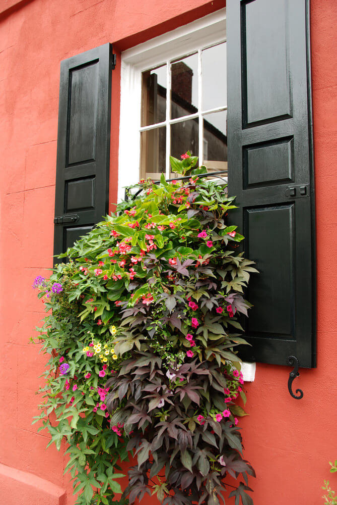 40 Window And Balcony Flower Box Ideas Photos Home