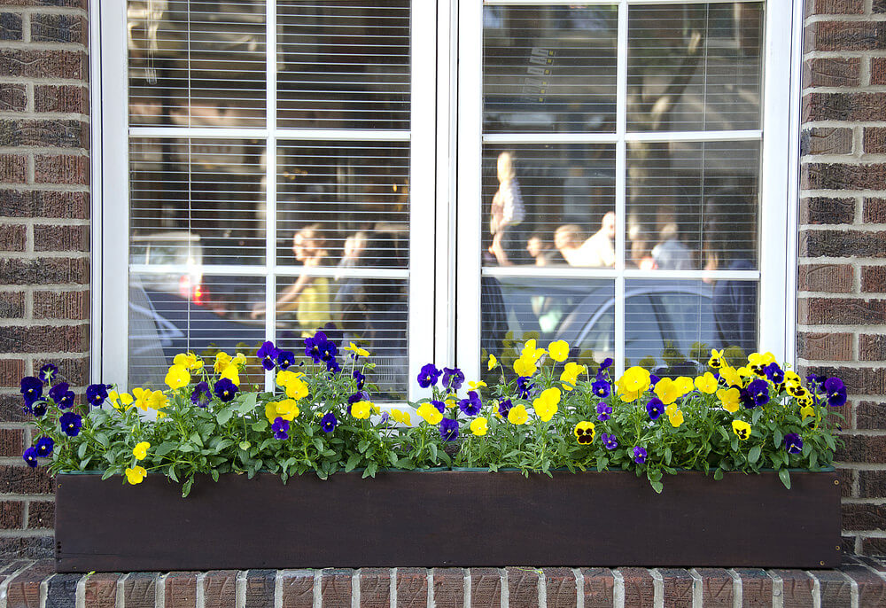 Wood flower box underneath a window on a brick ledge filled with purple and yellow flowers.