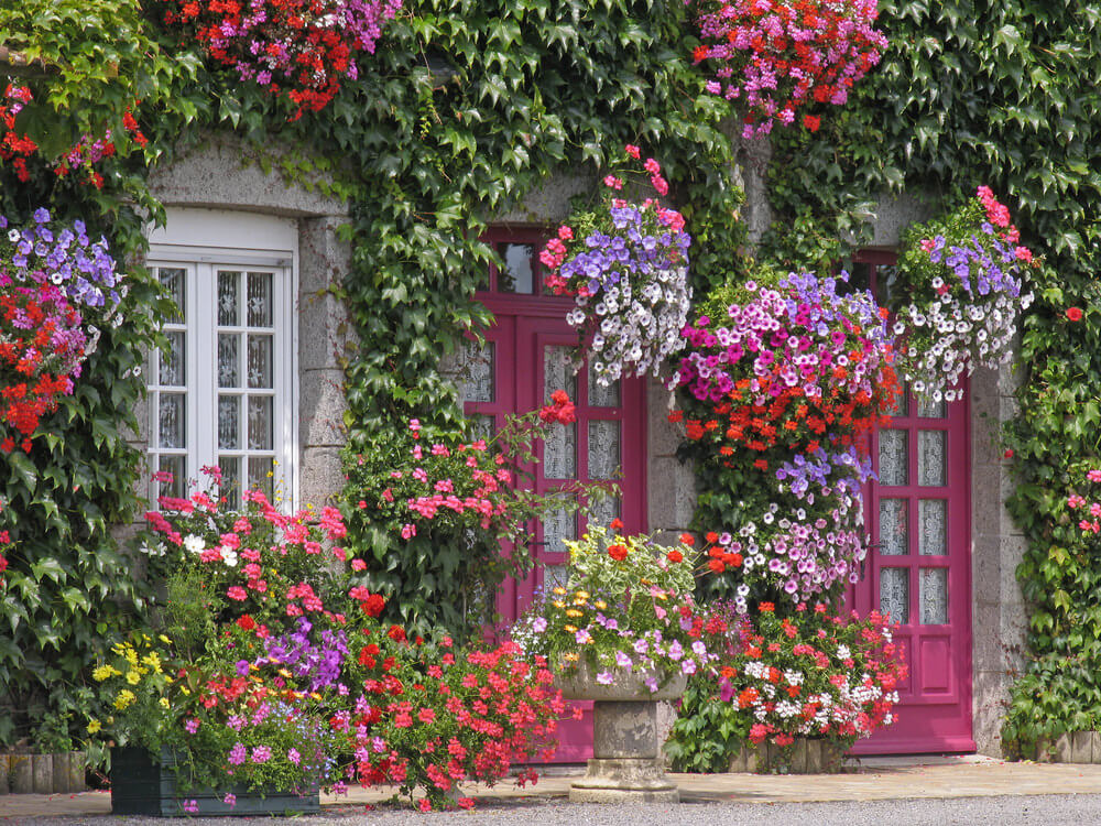 59 front door flower and plant ideas Garden home communities
