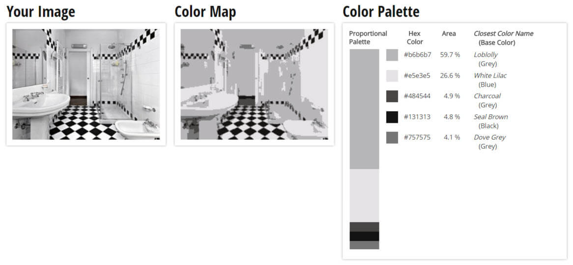 Color Palette for Black and White Bathroom Color Scheme