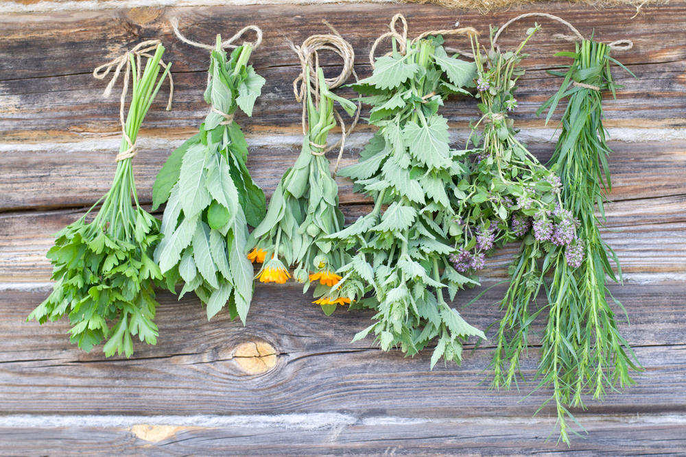 fresh herbs hanging in home as all-natural air freshener