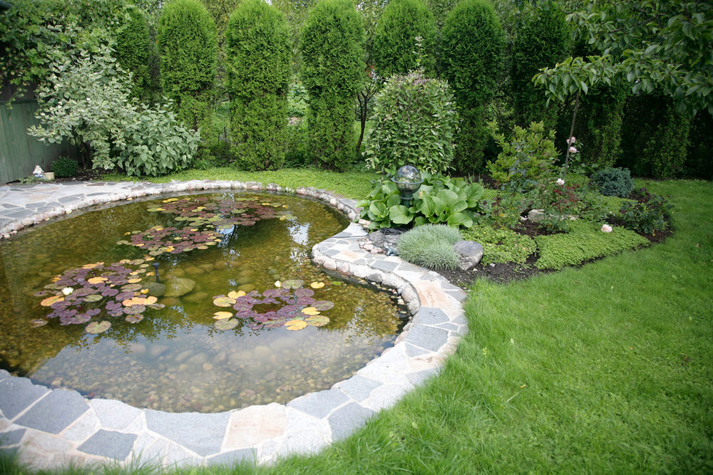 35 Backyard Pond Images (GREAT Landscaping Ideas) on Small Pond Landscaping Ideas id=83484