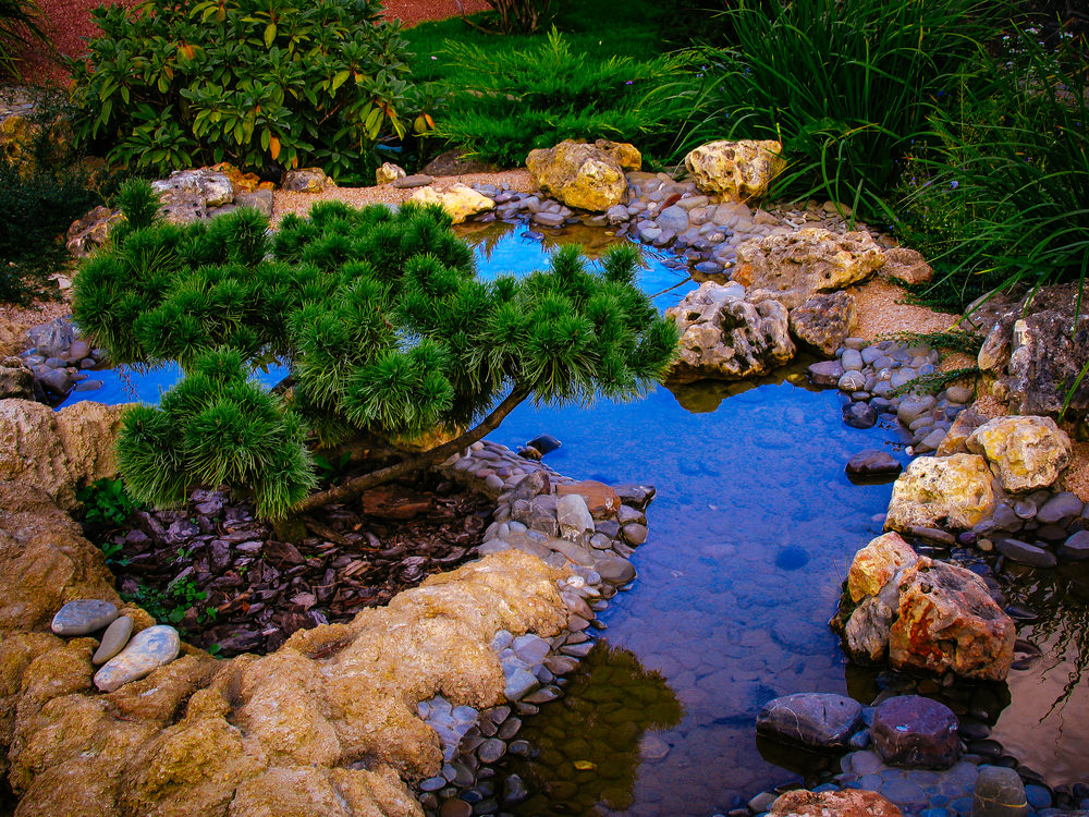 35 backyard pond images great landscaping ideas for Outdoor pond