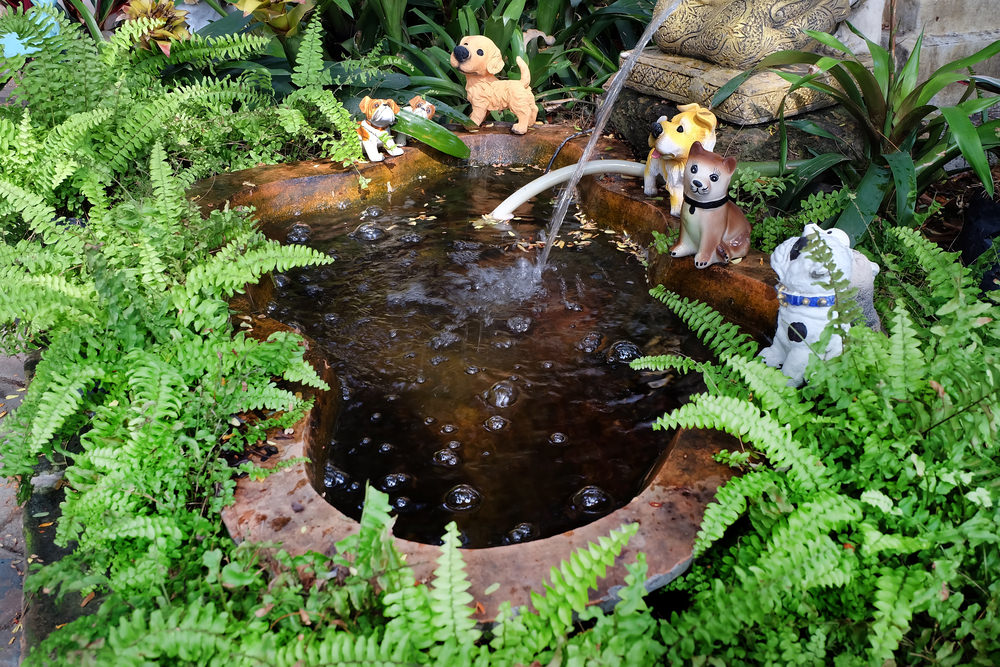 Ferns and cute puppies adorn this small pond tucked away in a corner of the yard. There's even a couple of pillows to make it more comfortable sitting by the pond.