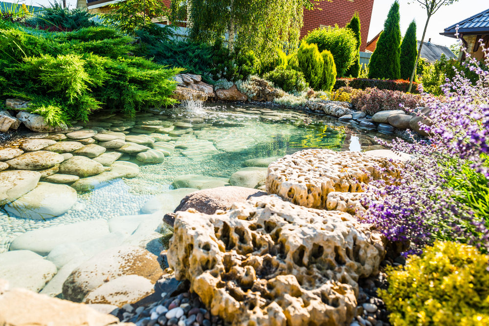 35 backyard pond images great landscaping ideas for Beautiful small ponds