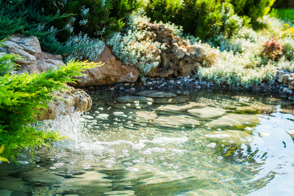 I love this happy looking pond. The small waterfall is strong enough to make the water bubble. How fun!