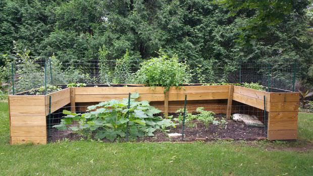 This Particular Bed Combines A Raised Bed With A Traditional Garden Layout.  This Option Is