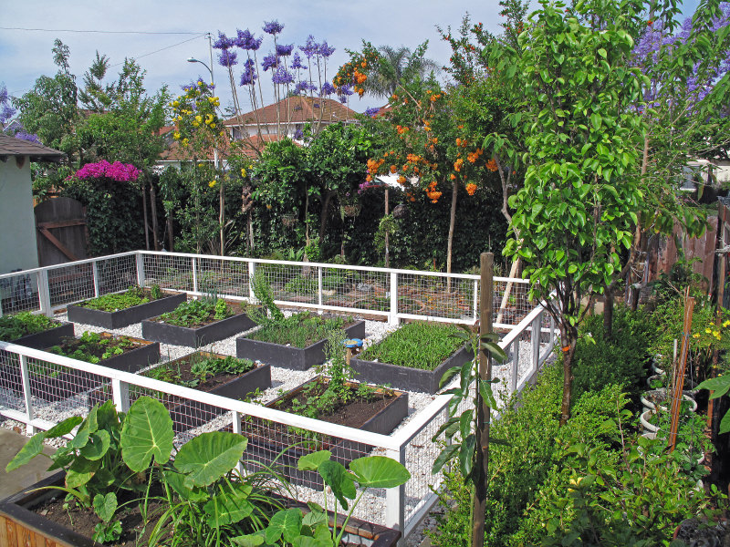 avid gardeners can appreciate this well organized lot of garden beds each box can - Raised Garden Bed Design Ideas