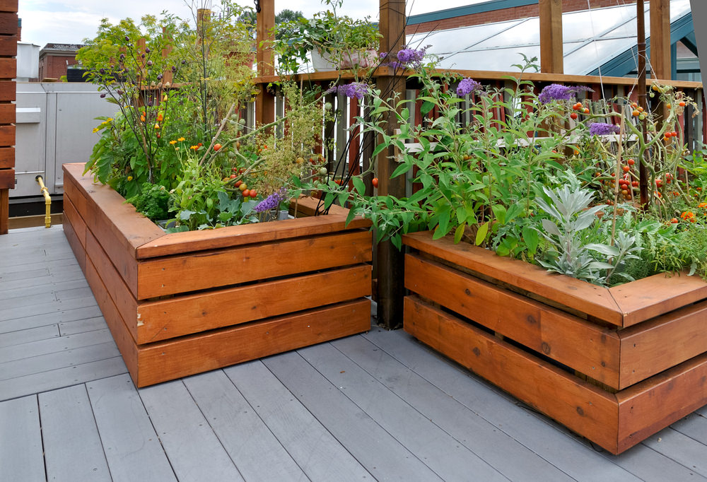 Even Though This Garden Uses Wood, The Design Of The Beds Provide A Modern  Feel