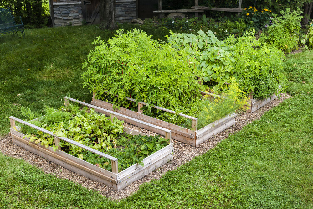 32 Raised Wooden Garden Bed Designs & Examples