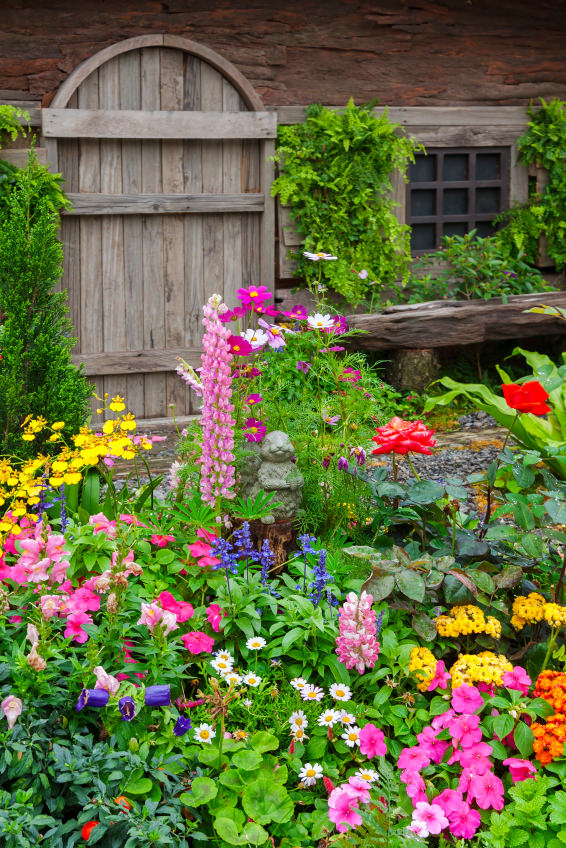40 colorful garden ideas color explosion for Colorful front yard landscaping