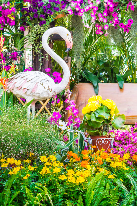 This flamingo looks even more adorable being surrounded with colorful bushes of flowers. Colorful blooms like yellow cosmos, purple orchids, yellow begonias, pink petunias give light to it.