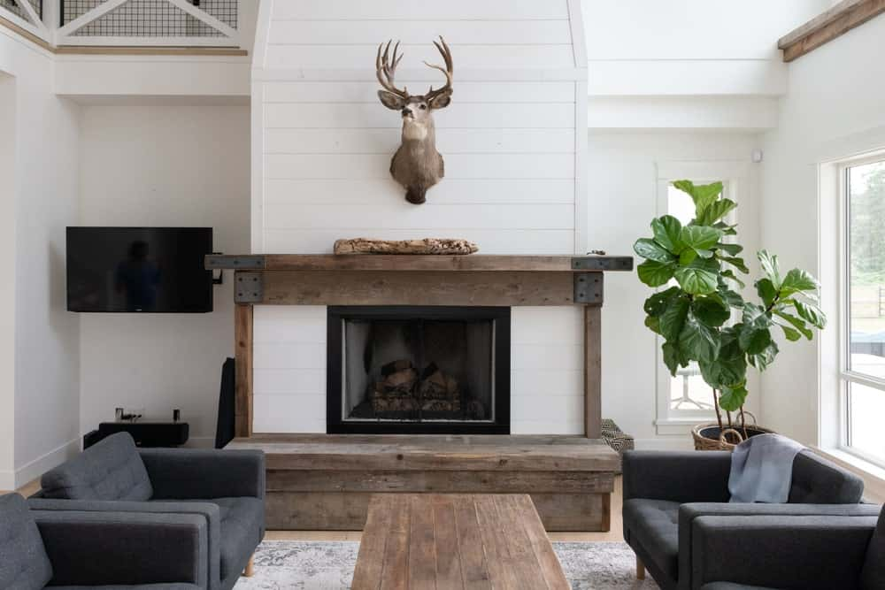 Farmhouse living room with a rustic fireplace flanked between a wall-mounted TV and an indoor plant.