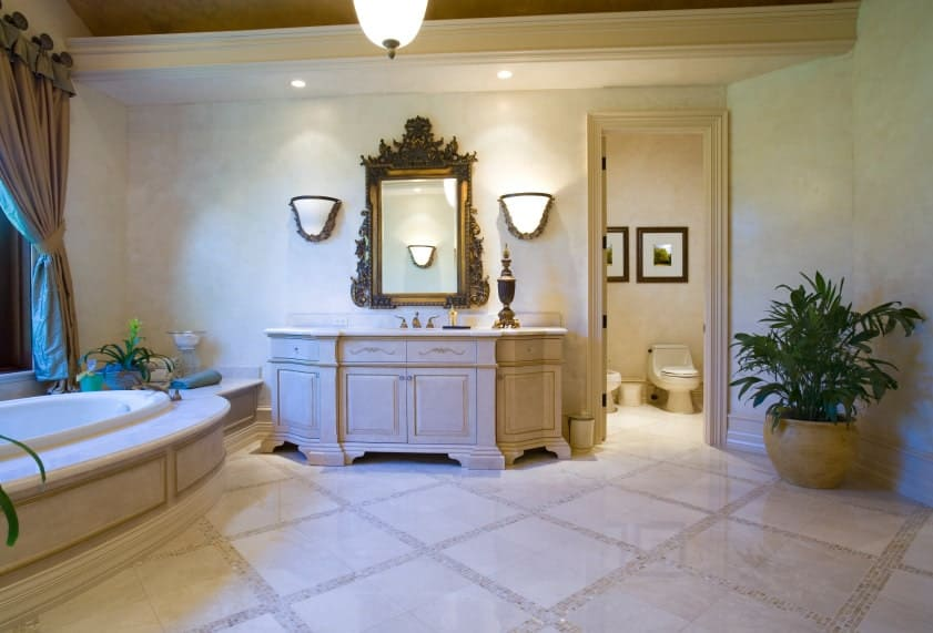 A large potted plant in the corner creates a refreshing ambiance in this master bathroom offering a toilet area and bathtub along with sink vanity that's accented with an ornate mirror.