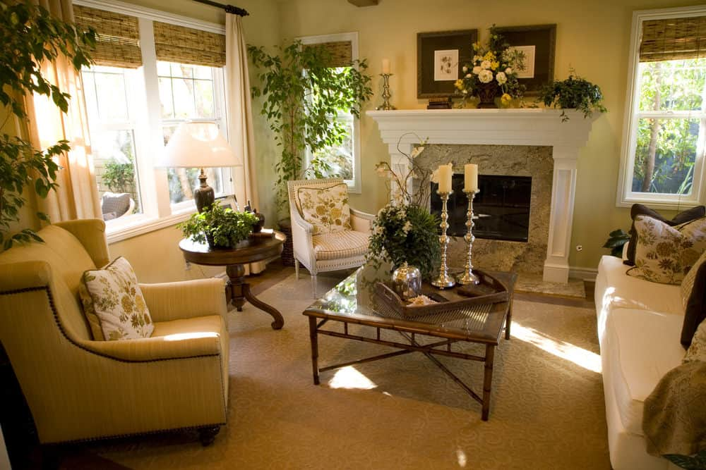 A Country-style formal living room featuring a set of classy seats and a fireplace, surrounded by indoor plants.