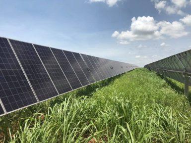 McDonald's abastece 39 lanchonetes no Brasil com energia solar