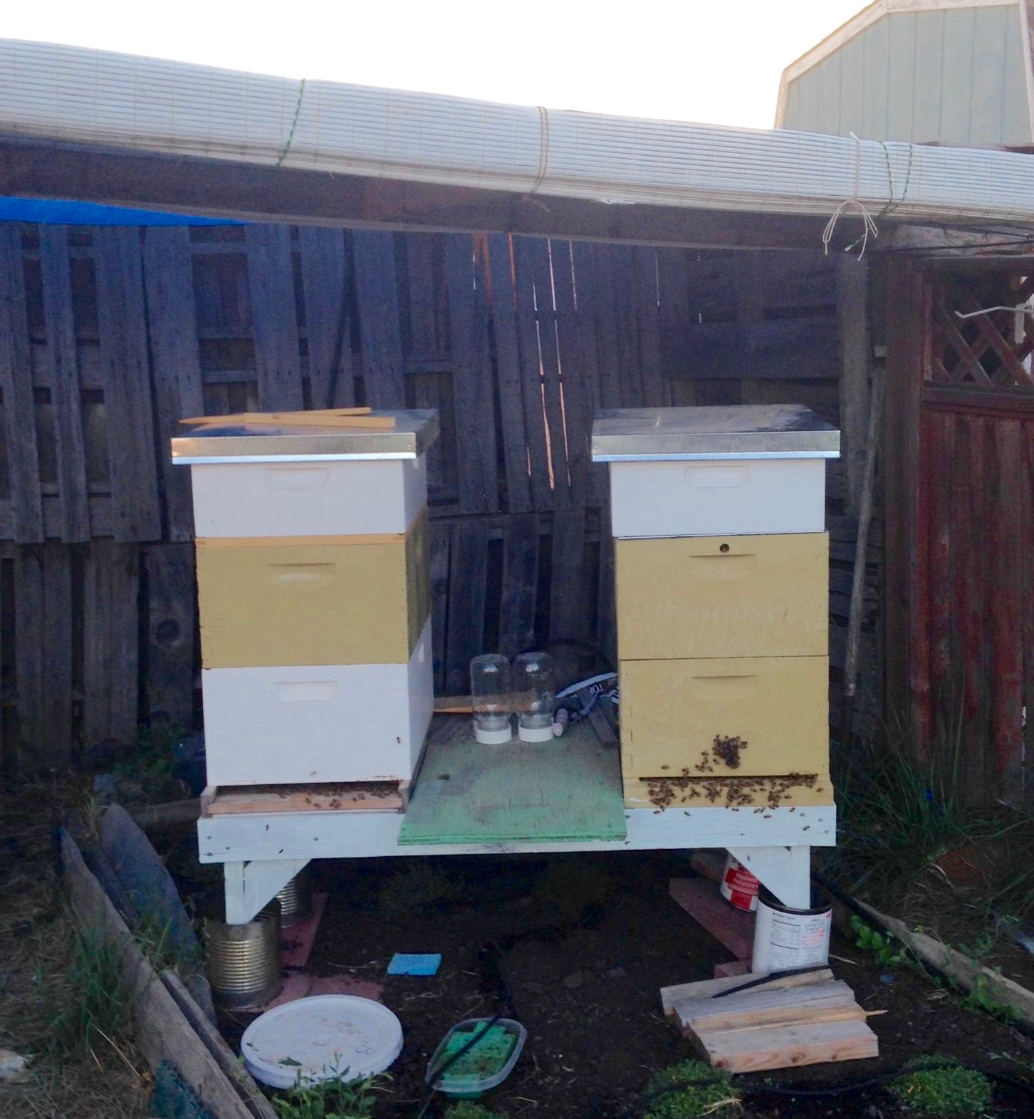 Covered Apiary
