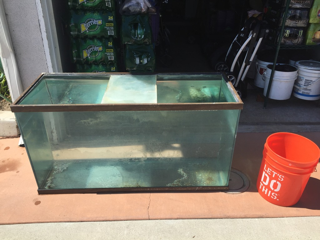 100 gallon holds water and has a lid