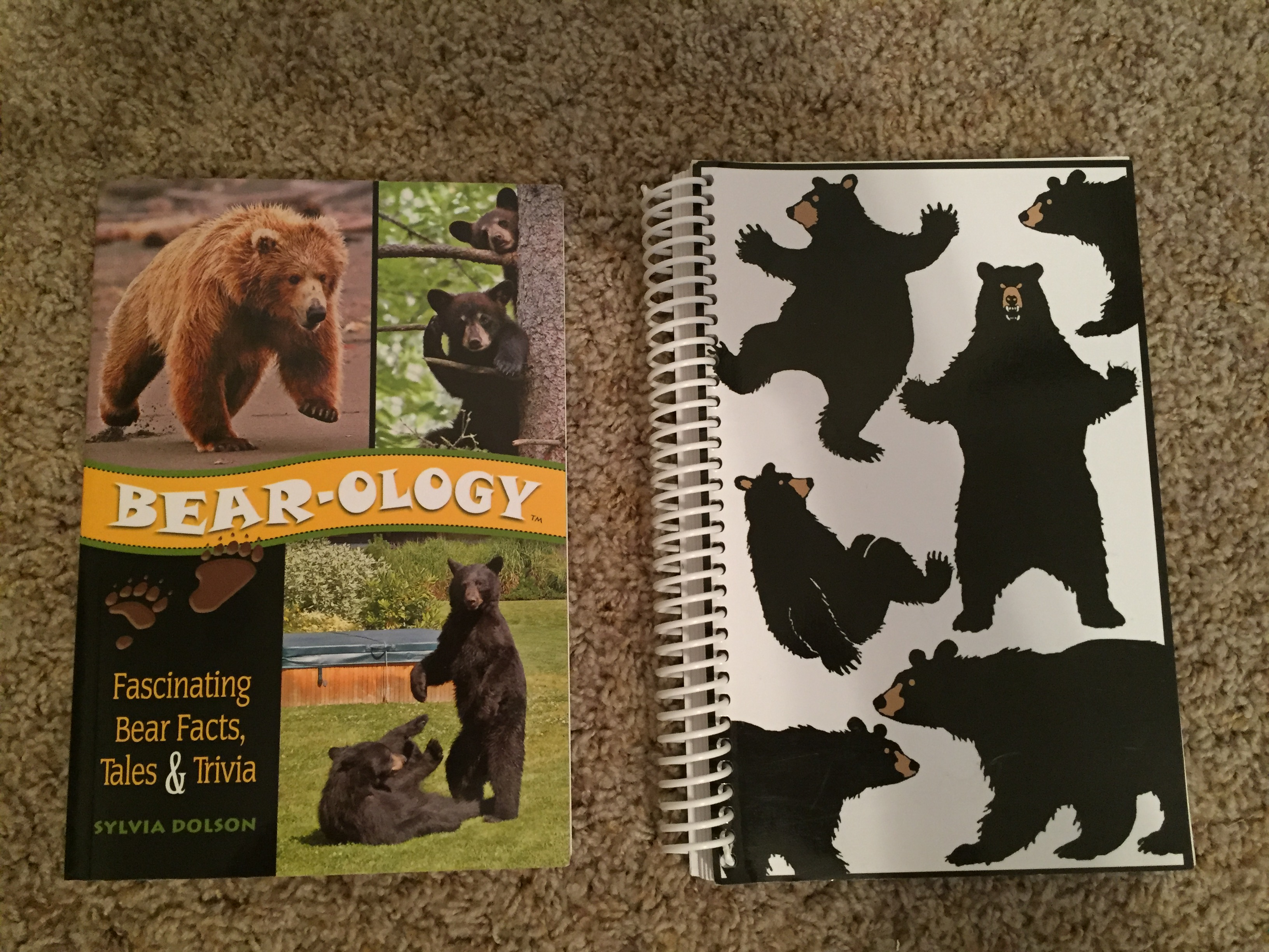 """Bear-ology"" - fascinating bear facts, tale & trivia - paperback & bear design blank journal/sketchbook - both excellent condition to like"