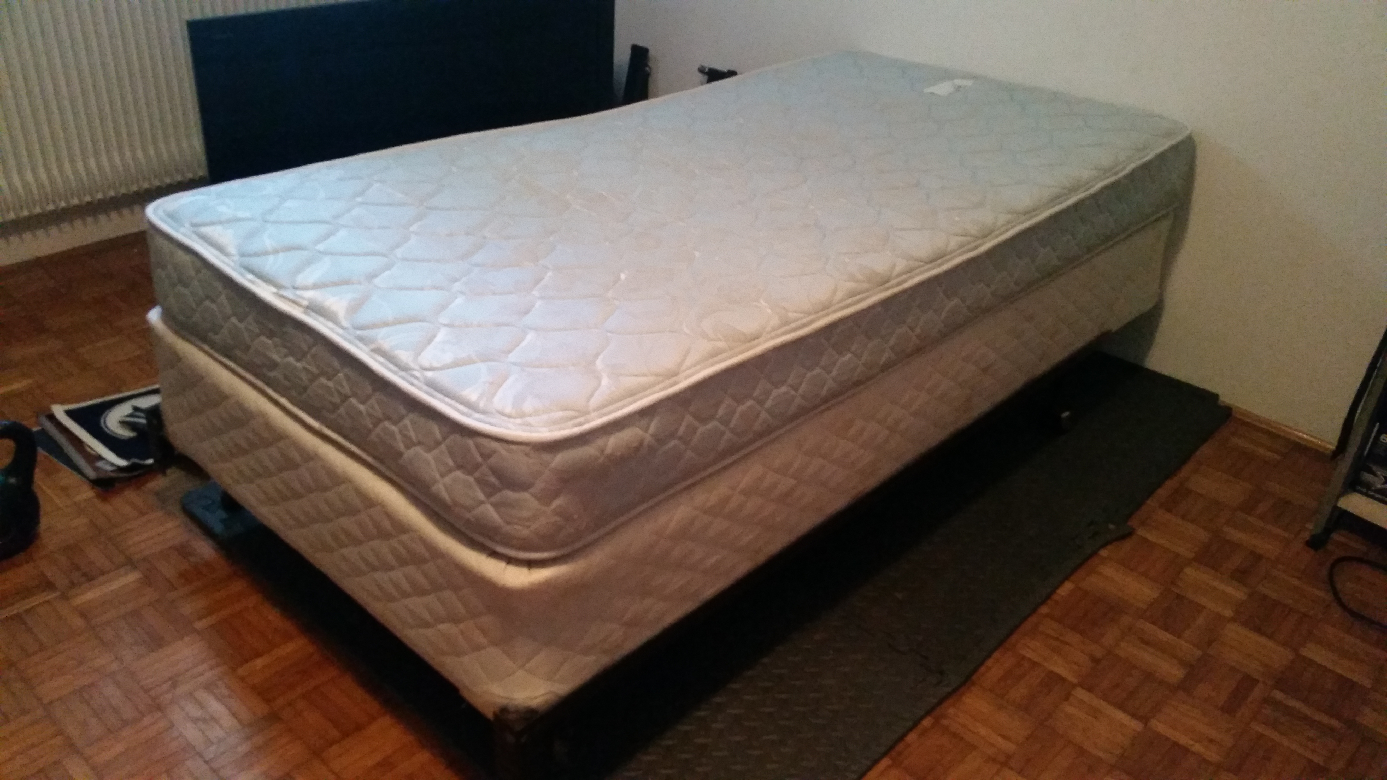 Twin sized mattress, box spring, and metal bed frame