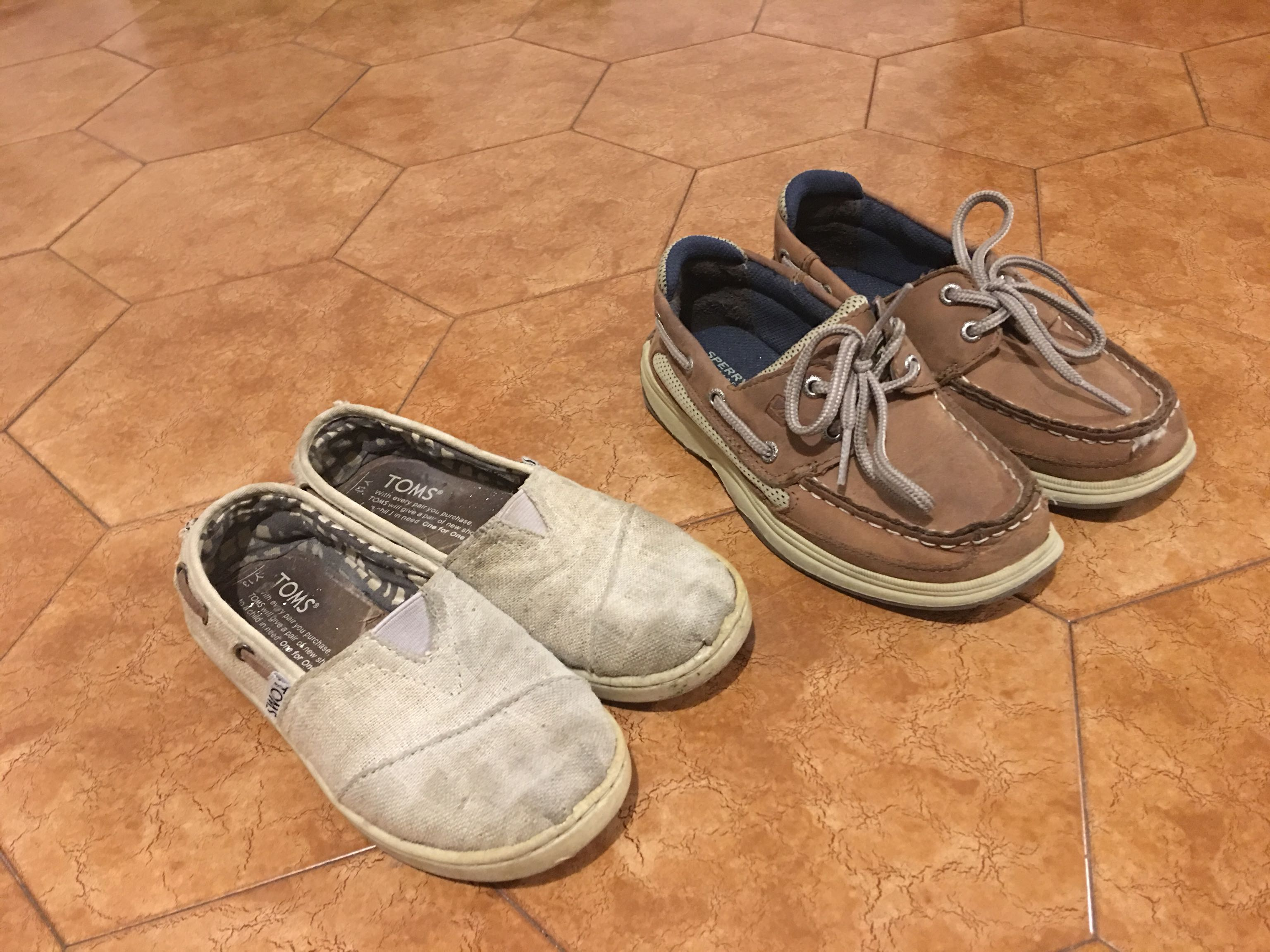 Boys Sperry & Toms - size 13