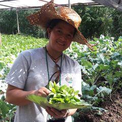 Anita farmer bass 1521575594