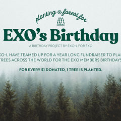 Exo planting forest 1546494150