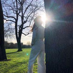 Lauren   tree copy 1558527712