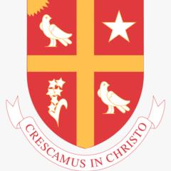 201 2012736 university of st university of st thomas houston