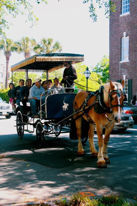 a carriage tour through the town center