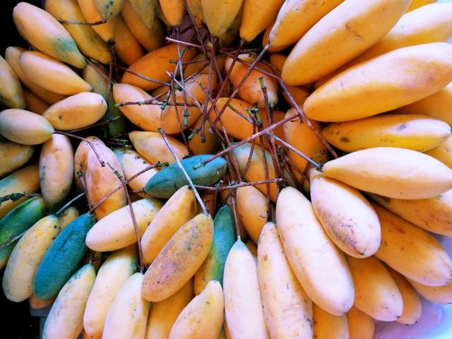 tumbo fruit
