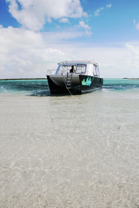 a 40ft yacht for our snorkel tour