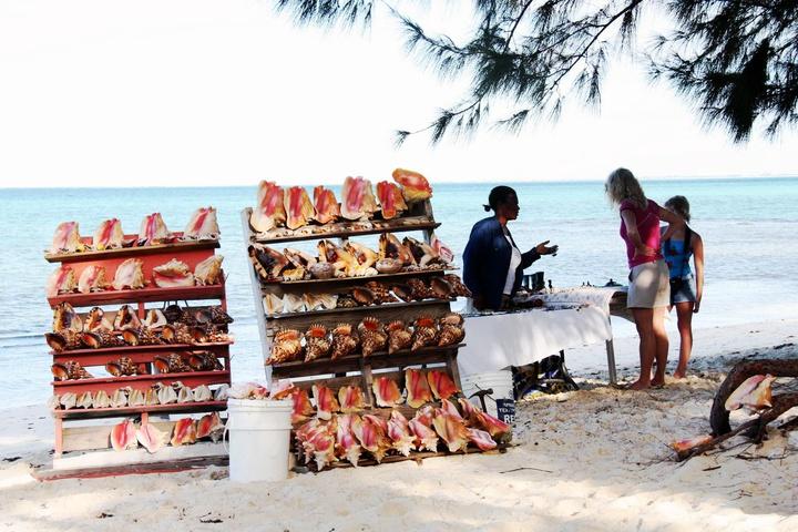 seashell is a popular local souvenir