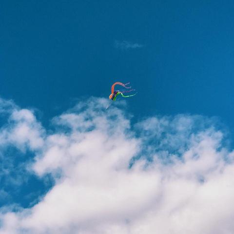 octopus kite